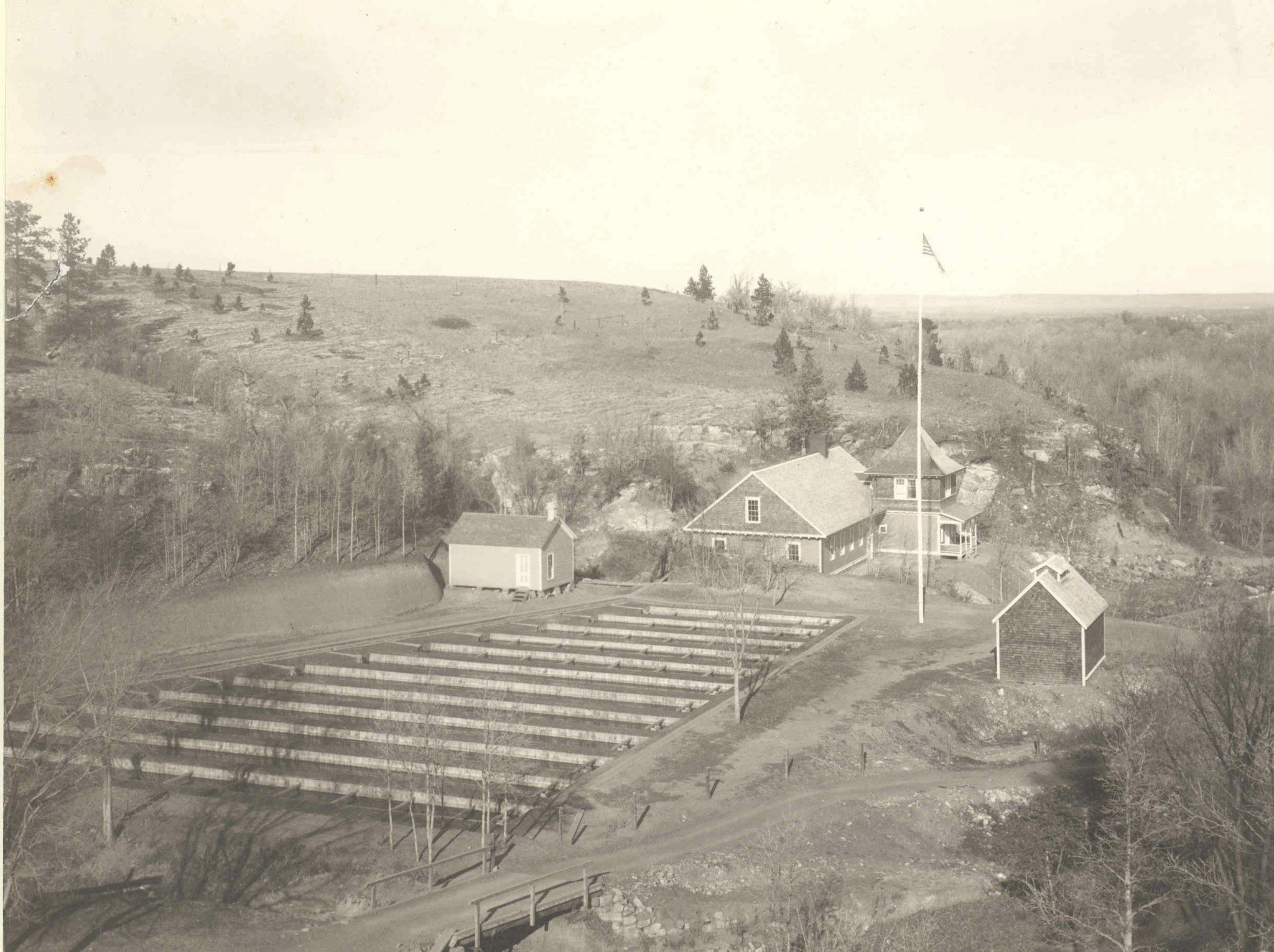 1899hbabove