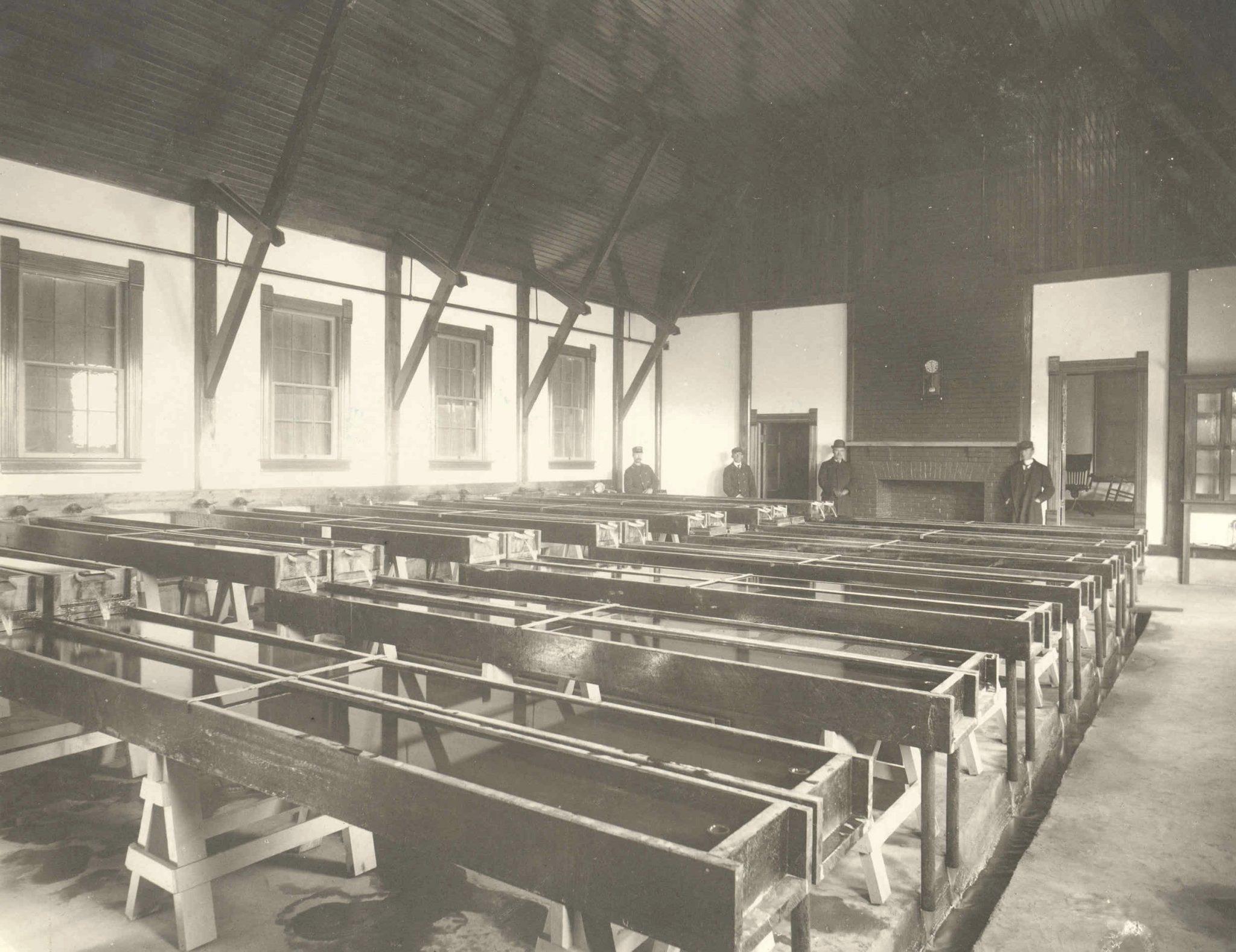 1899hbint
